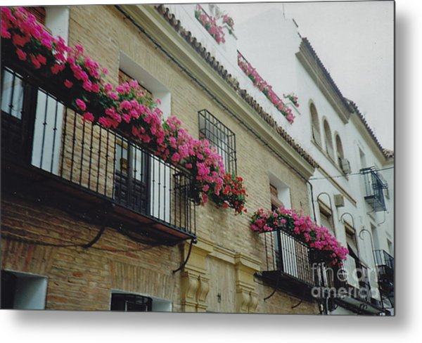 European Flowerboxes Metal Print by Barbara Plattenburg