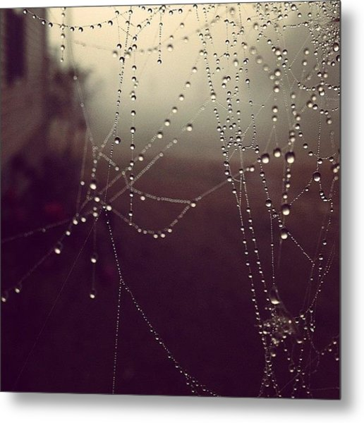 Even The Tiny Spiders Couldn't Escape Metal Print