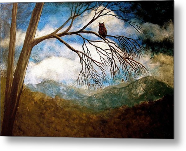 Evening Draws In Metal Print by Heather Matthews