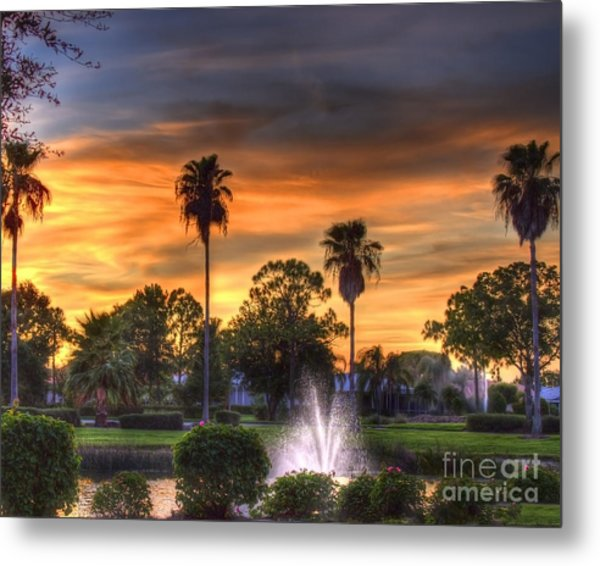 Evening Palms Metal Print