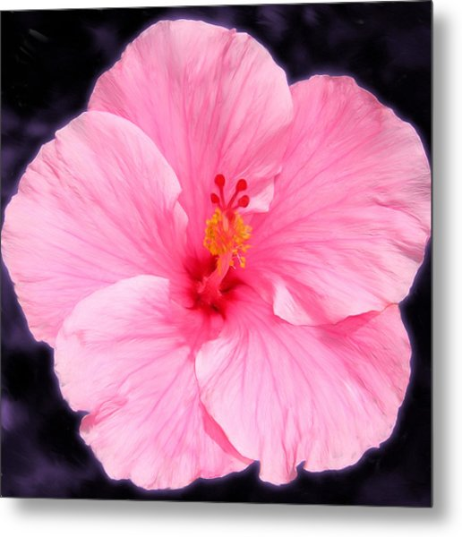 Face Hibiscus Metal Print by Marcos Porcayo