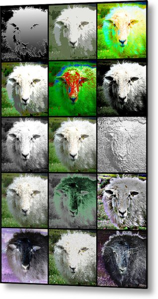 Facets Of Innocence Metal Print