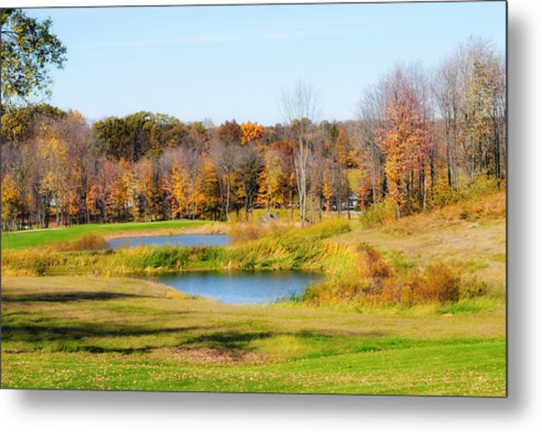 Fall At The Ponds Metal Print