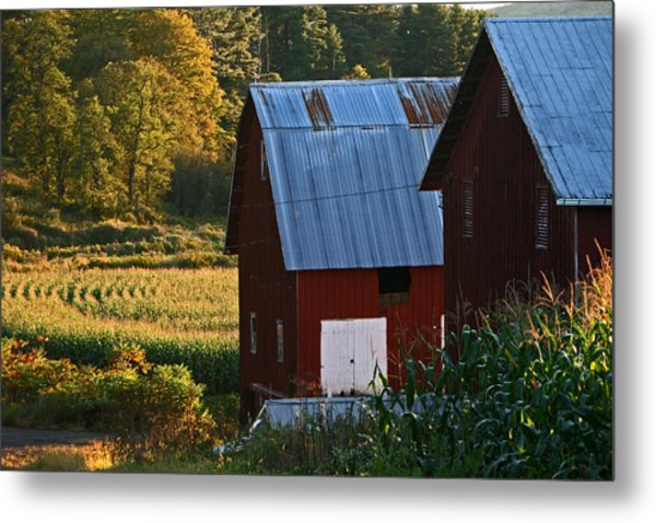 Fall Barns Metal Print