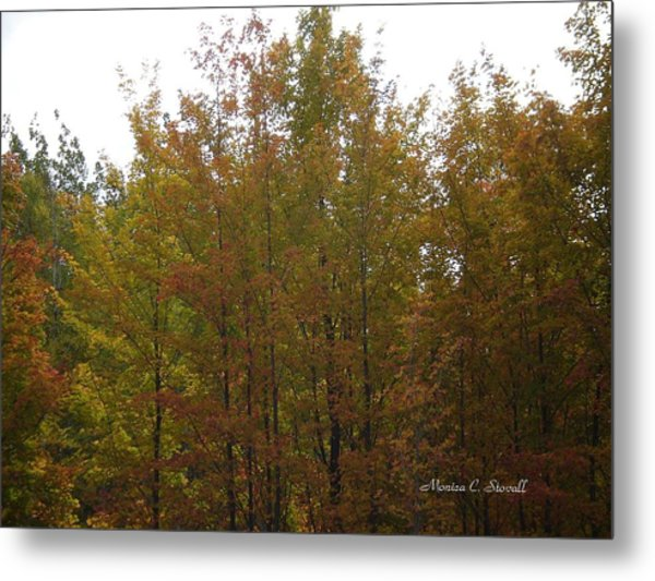 Fall Colors Colection - Michigan Metal Print