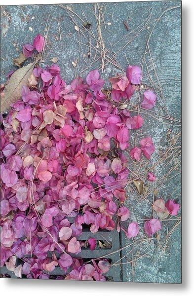 Fall Colours  Metal Print