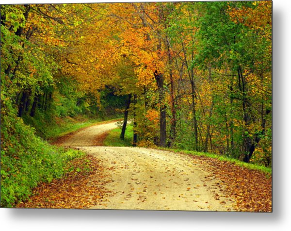 Fall Curves Metal Print by Susan Camden