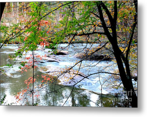 Fall Day  Metal Print by Ar S