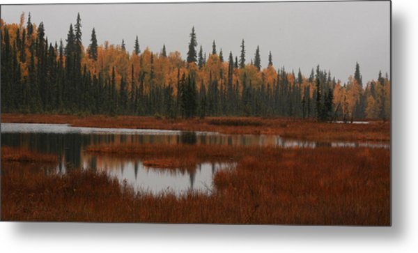 Fall In Alaska Metal Print