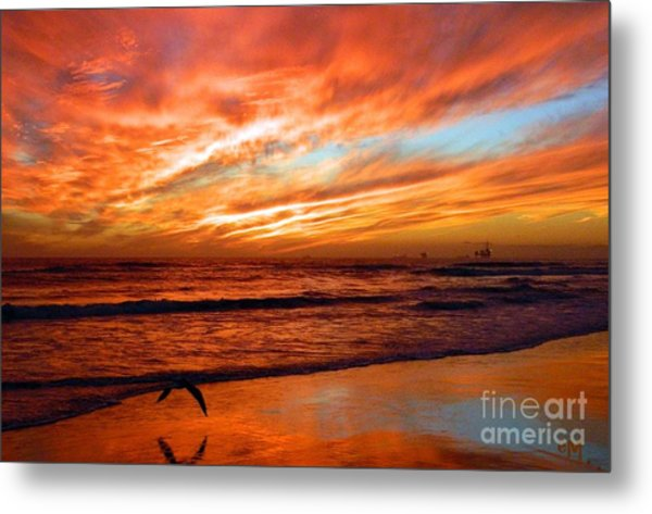 Fall In California Metal Print