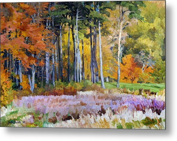 Fall In The Arboretum Metal Print