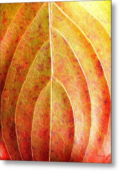 Fall Leaf Upclose Metal Print