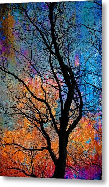 Fall Magic Metal Print
