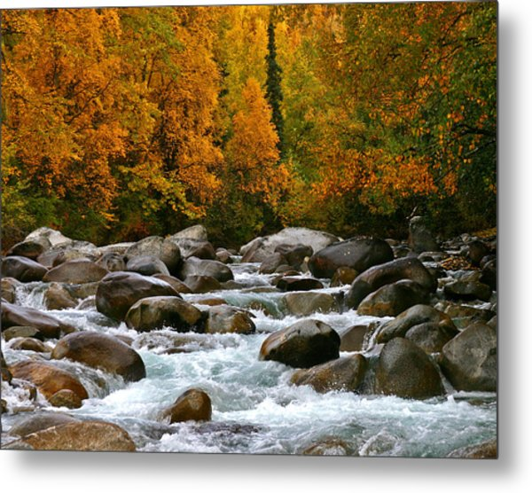 Fall On The Little Susitna River Metal Print