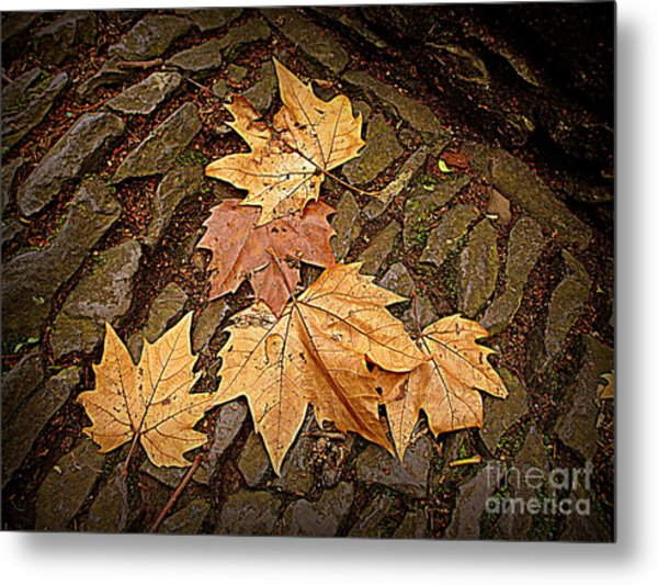Fall Pattern Metal Print