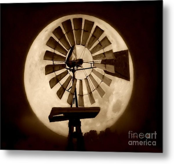 Fan In The Moon Metal Print
