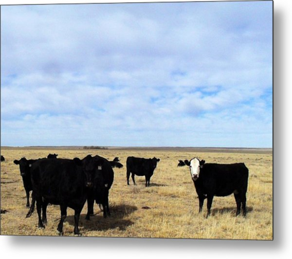 Farm Friends Metal Print