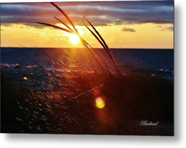 February Sunset Metal Print