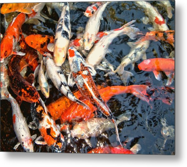 Feeding Time Metal Print