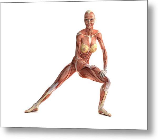 Female Muscles, Artwork Metal Print by Sciepro