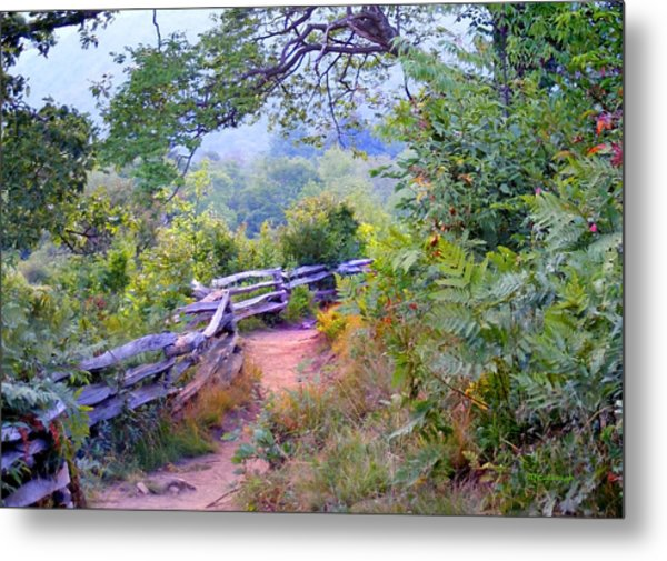 Fence To The Blueberries Filtered Metal Print