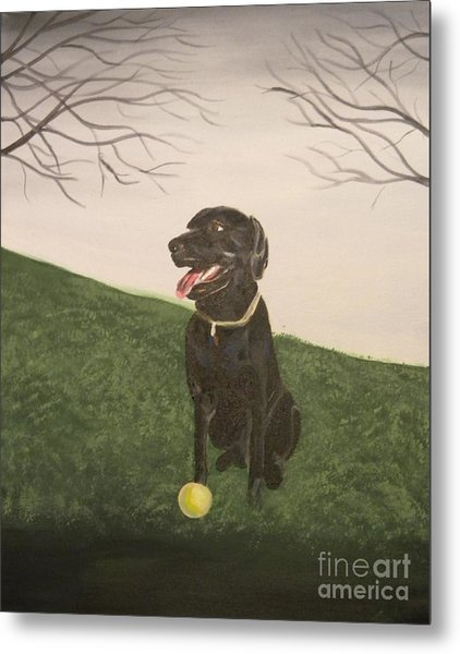 Fetch Metal Print