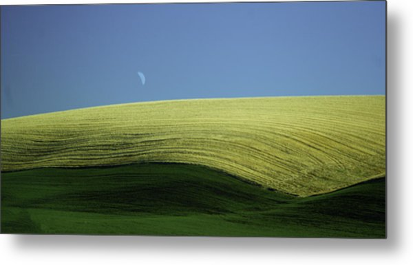 Fields And Quarter Moon Metal Print by Dale Stillman