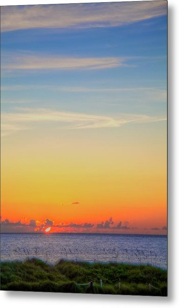First Light Metal Print by William Wetmore