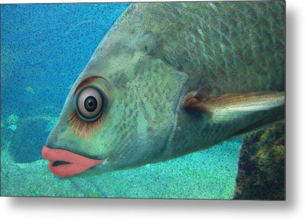 Fish Seeking Fish  Metal Print