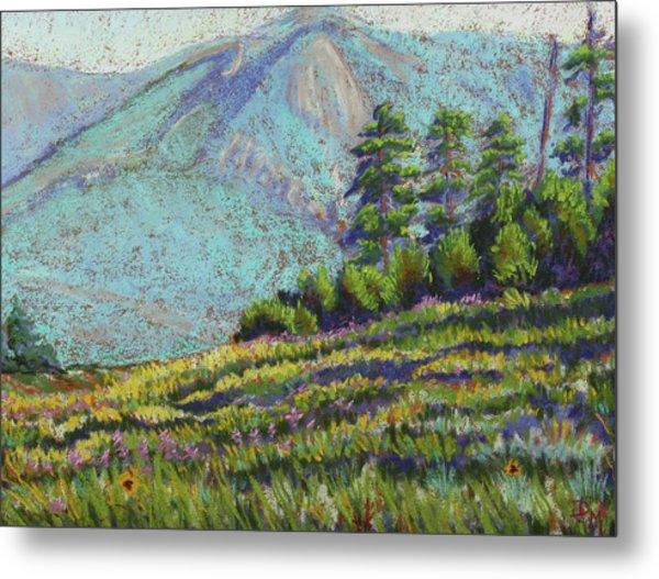 Flagstaff Meadow Metal Print