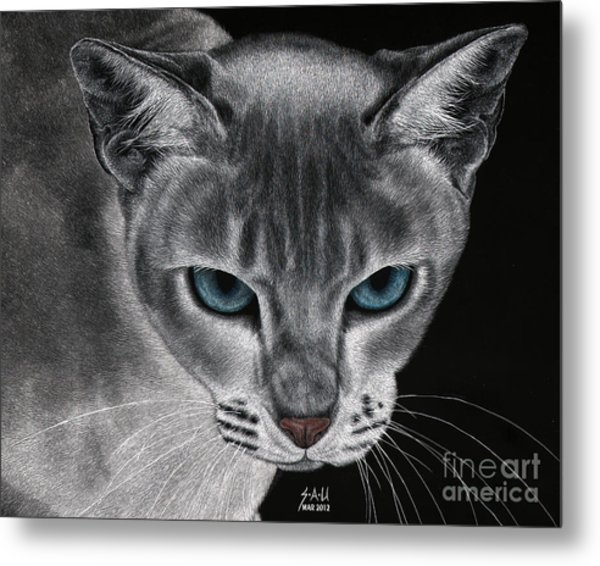 Flame Point Siemese Cat Metal Print