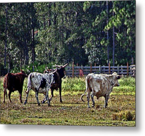 Fleeing Cows Of 441 Metal Print