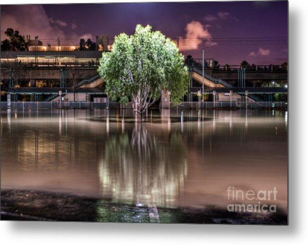 Flooded Tree Metal Print
