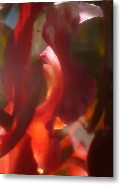 Floral Flamenco Metal Print