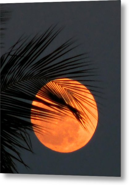 Florida Moonrise Metal Print