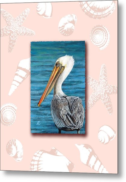 Florida Pelican With Seashell Border Metal Print by Peggy Dreher