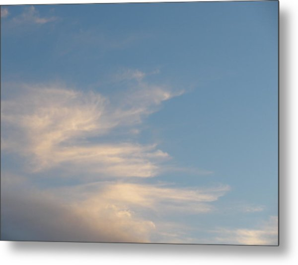 Florida Sky I Metal Print by Suzanne Fenster
