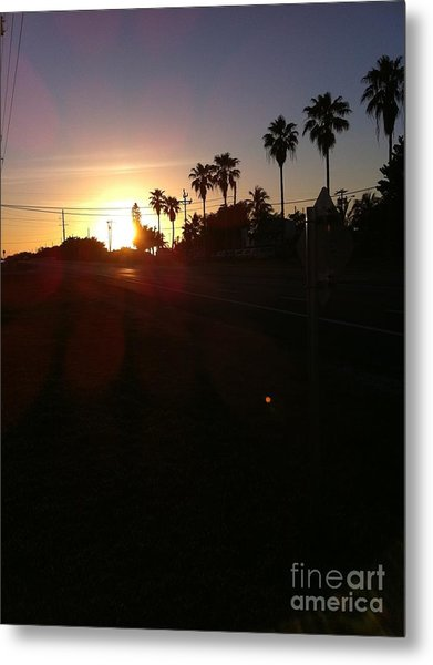 Florida Sunrise Metal Print by Richard Chapman