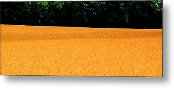 Flow Of The Field 3 Ae  Metal Print by Lyle Crump