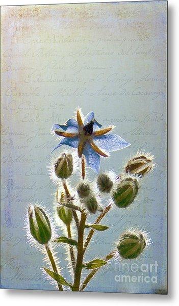 Flower Fuzz Metal Print