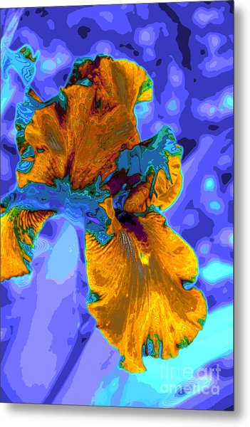 Flower Moderna Metal Print by Rick Bragan