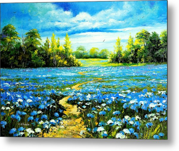 Flower Path Way Metal Print by Nelsons