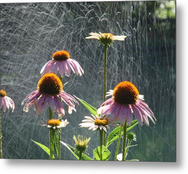 Flowers In The Rain Metal Print