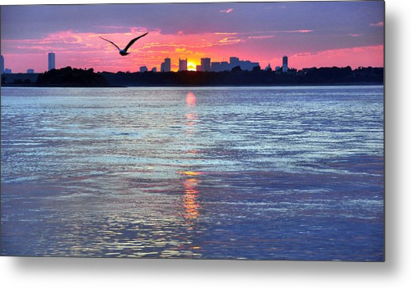 Fly By Night Metal Print