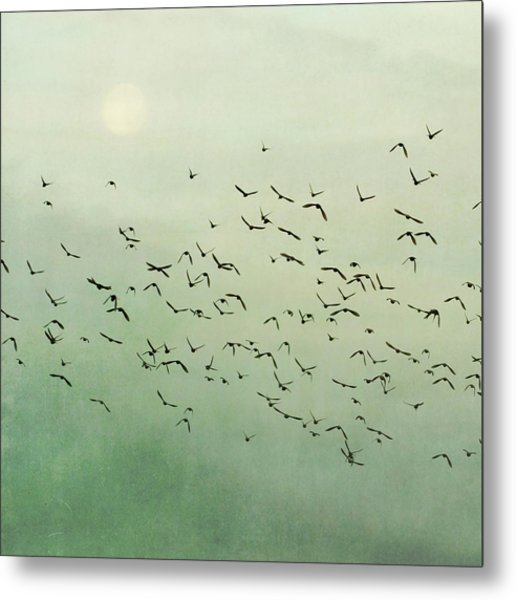 Flying Flock Of Birds Metal Print by Laura Ruth
