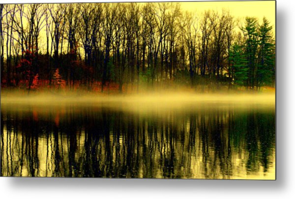 Fog At  Farrington Lake Metal Print