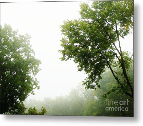 Foggy Morning Metal Print by Marsha Heiken