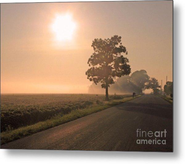 Foggy Sunrise On Soybean Field Metal Print