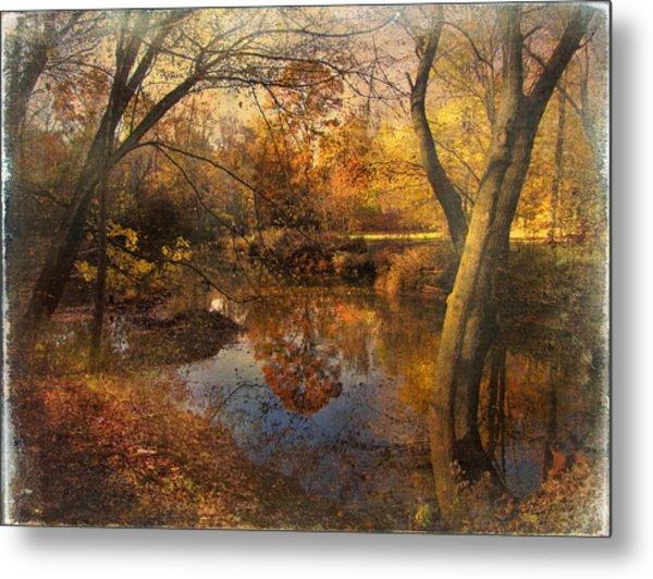 Foliage Canvas Metal Print by John Rivera