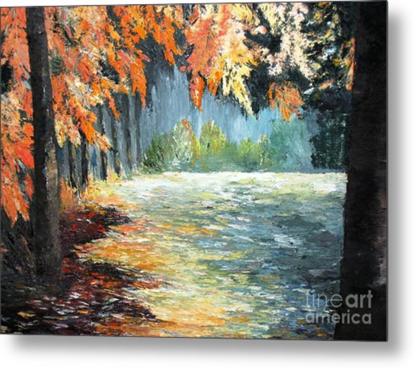 Forest In Fall Metal Print